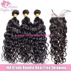 Free Shipping Brazilian Human Hair Water Wave Bundle Deal Sew In Weave 3 Bundles With Closure Frontal
